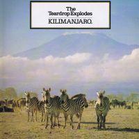 The Teardrop Explodes - Kilimanjaro