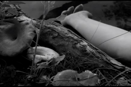 Lost in the Woods: il nuovo video degli Afghan Whigs
