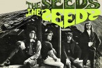 the-seeds-front
