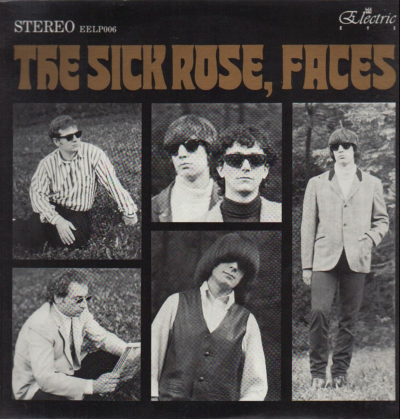 thesickrose-faces(raregaragelp)