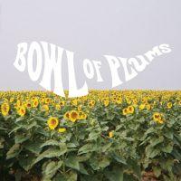 Ben Seretan - Bowl of Plums
